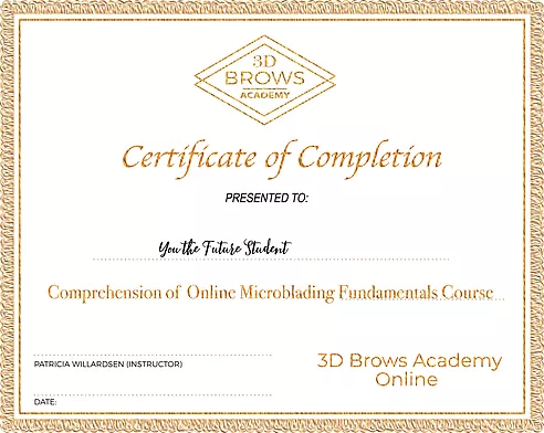 Microblading Certification - 3D BROWS ACADEMY, Utah