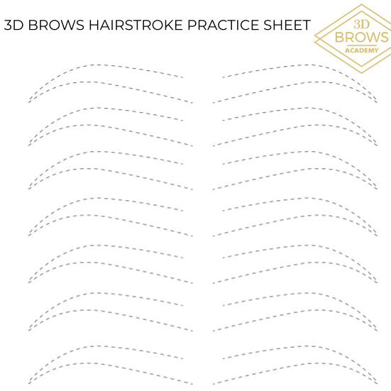 Microblading Hairstrokes Practice Sheet - 3D BROWS ACADEMY, Utah