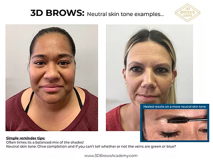 Microblading Neutral Skin Tone Examples - 3D BROWS ACADEMY, Utah