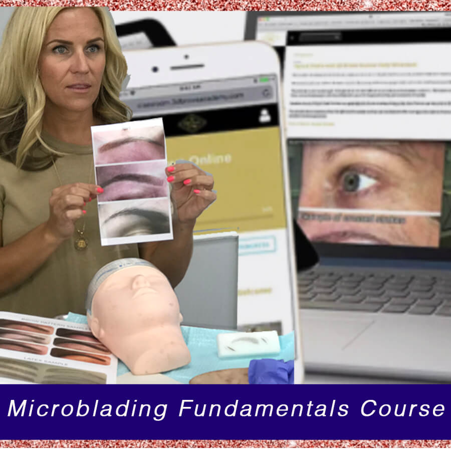 Woman Instructs a Microblading Fundamentals Course With Eyebrow Diagrams