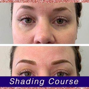 Eyebrow Shading Before and After from 3D Brows